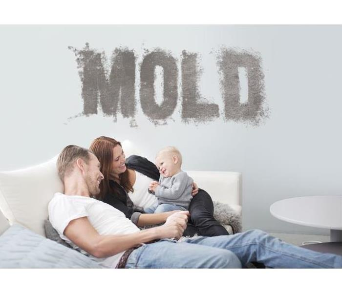 Mold Remediation Controlling MOLD in your Residential Home/Commercial Facility
