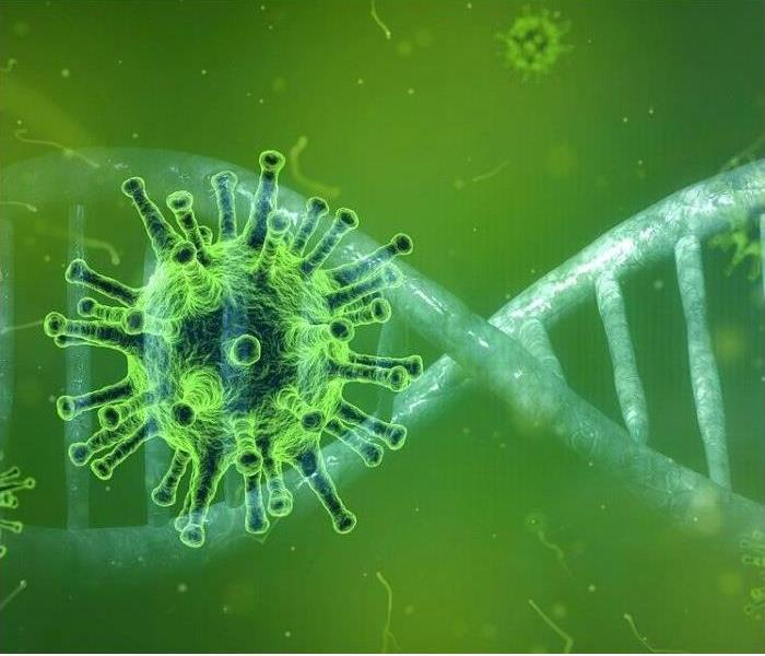 coronavirus cell in front of dna strand with green background