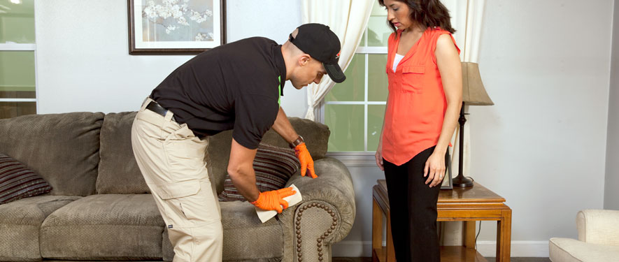 Carson, CA carpet upholstery cleaning